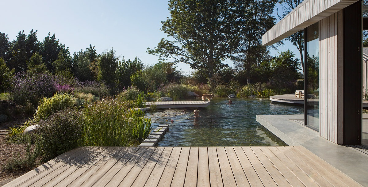 grand designs pond house in chichester with natural swimming pool